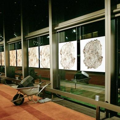 input # output ::: Installation im Brucknerhaus Linz ::: November 2003