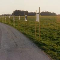 Ausstellung ::: Apfoltern ::: April-Juni 1998
