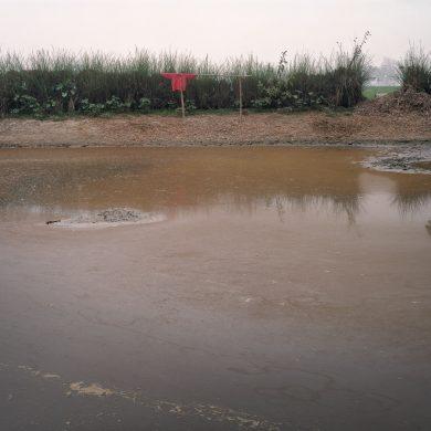 Pond in Rudrapur